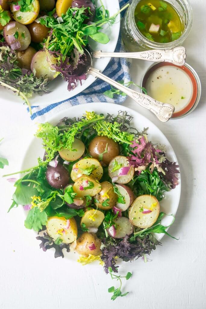 Make the most of fresh spring harvest with this light, healthy Spring Warm Potato Salad. This 30 minute Vegan and Gluten Free recipe is incredibly delicious and beautiful to look at! | thelastcookie.ca