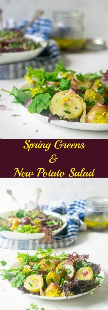 Make the most of fresh spring harvest with this light, healthy Spring Greens and New Potato Salad. This 30 minute Vegan and Gluten Free recipe is incredibly delicious and beautiful to look at! | thelastcookie.ca